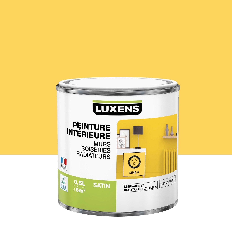 Peinture mur, boiserie, radiateur toutes pièces Multisupports LUXENS, lime 4, sa