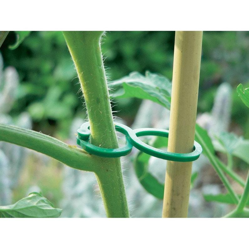 Clip De Fixation Tomate Nortene