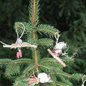 Atelier Enfant : Comment réaliser des décorations de Noël naturelles ?