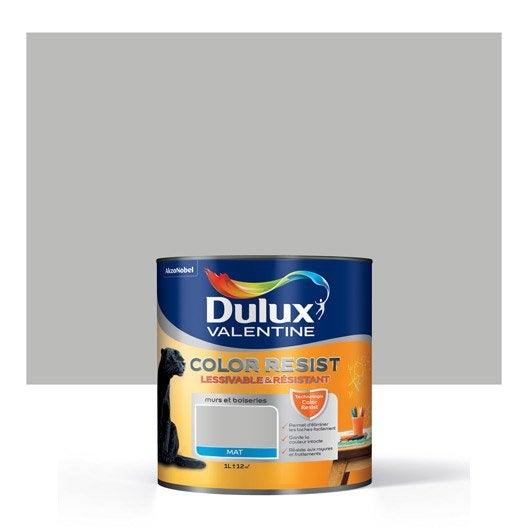 Peinture gris ciment dulux valentine color resist 1 l for Peinture dulux valentine gris