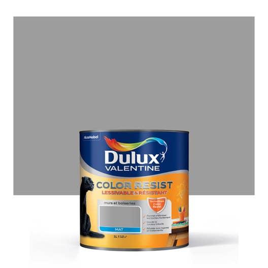 peinture gris aluminium mat dulux valentine color resist 1 l