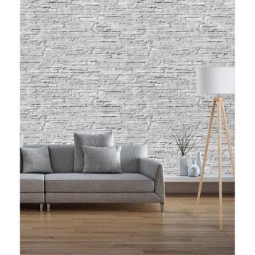 Lambris PVC, dalle murale : bois, adhésif, décoration au meilleur ...