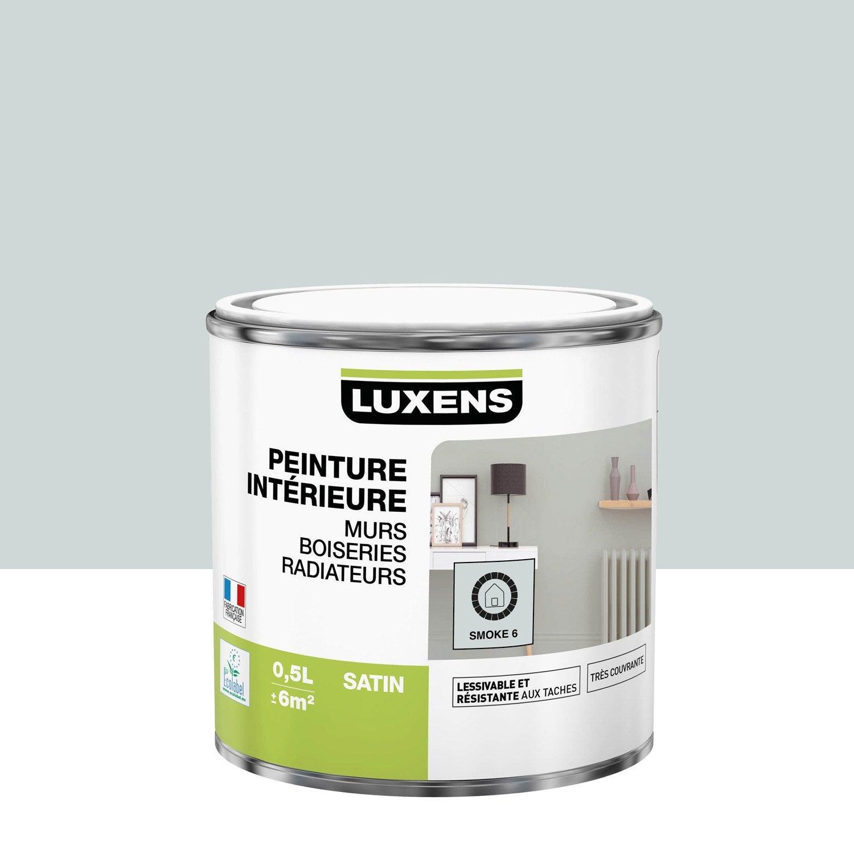 Peinture mur, boiserie, radiateur toutes pièces Multisupports LUXENS, smoke 6, s