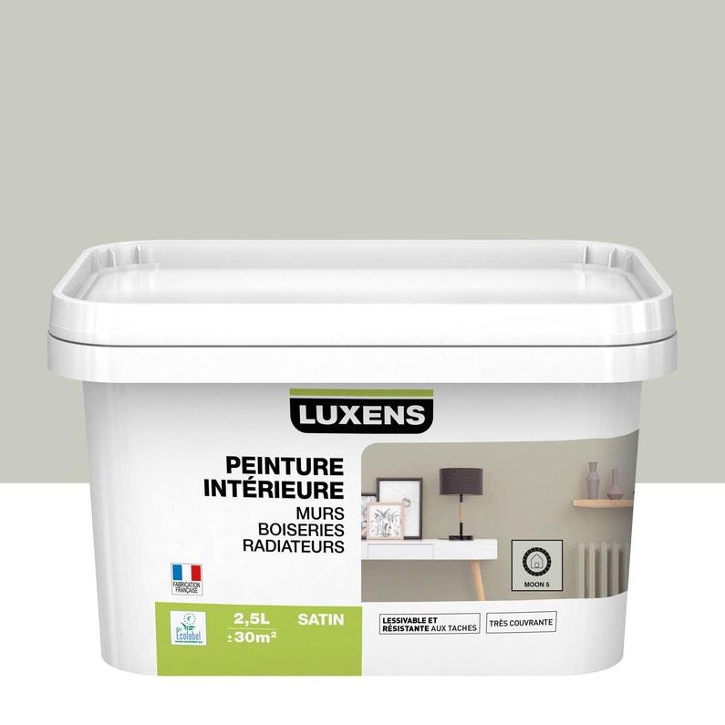 Peinture Mur Boiserie Radiateur Toutes Pièces Multisupports Luxens Moon 5 Sa