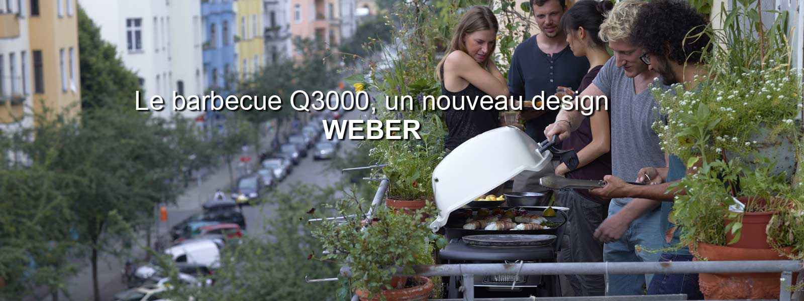 barbecue au gaz weber q3000, titanium | leroy merlin
