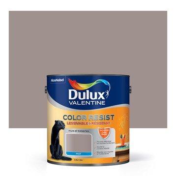 Peinture taupe collector DULUX VALENTINE Color resist 2.5 l