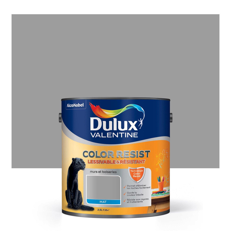 Peinture gris aluminium mat dulux valentine color resist 2 for Peinture dulux valentine gris