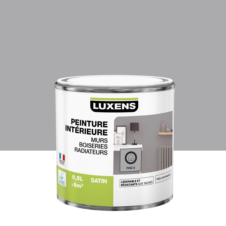 Peinture mur, boiserie, radiateur intérieur Multisupports LUXENS, fog 5, satin,
