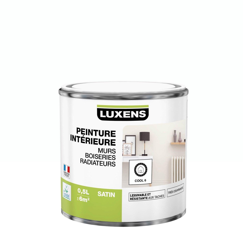 Peinture mur, boiserie, radiateur Multisupports LUXENS cool 6 satiné 0.5 l