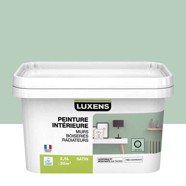 Peinture Mur Boiserie Radiateur Toutes Pièces Multisupports Luxens Cactus 6