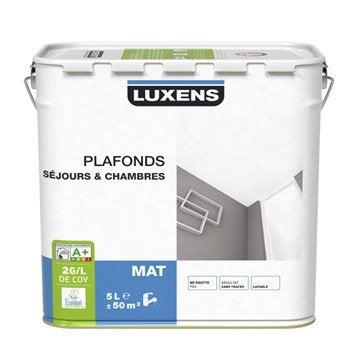 Peinture mur et plafond blanc peinture int rieure for Peinture mat plafond