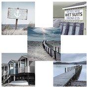 Set de 5 images Nature l.14 x H.14 cm
