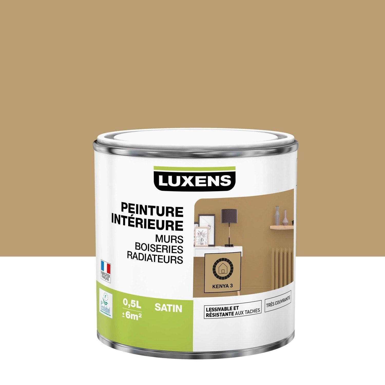 Peinture mur, boiserie, radiateur toutes pièces Multisupports LUXENS, kenya 3, s