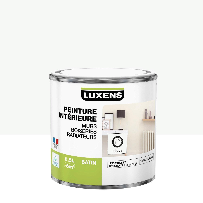Peinture mur, boiserie, radiateur Multisupports LUXENS cool 2 satiné 0.5 l