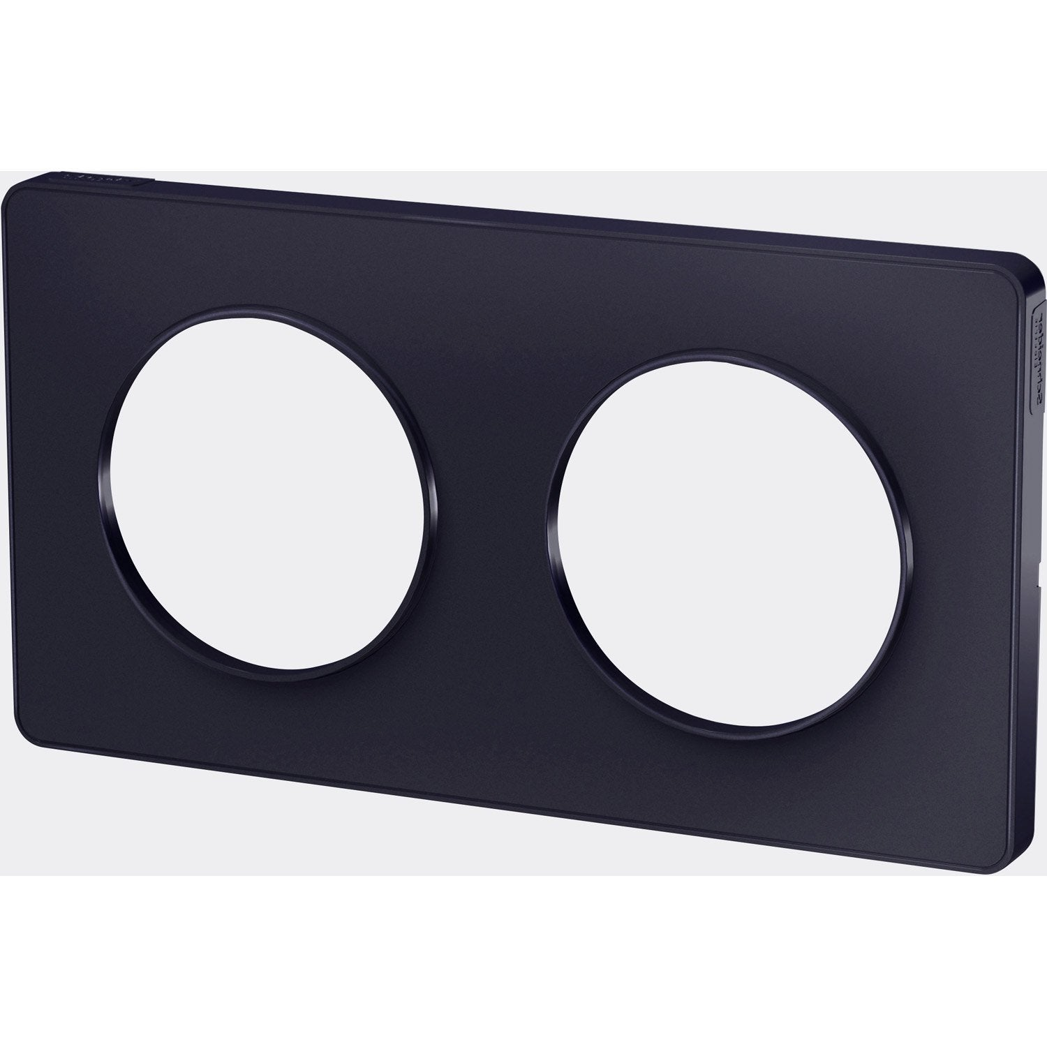 Plaque double Odace, SCHNEIDER ELECTRIC, anthracite