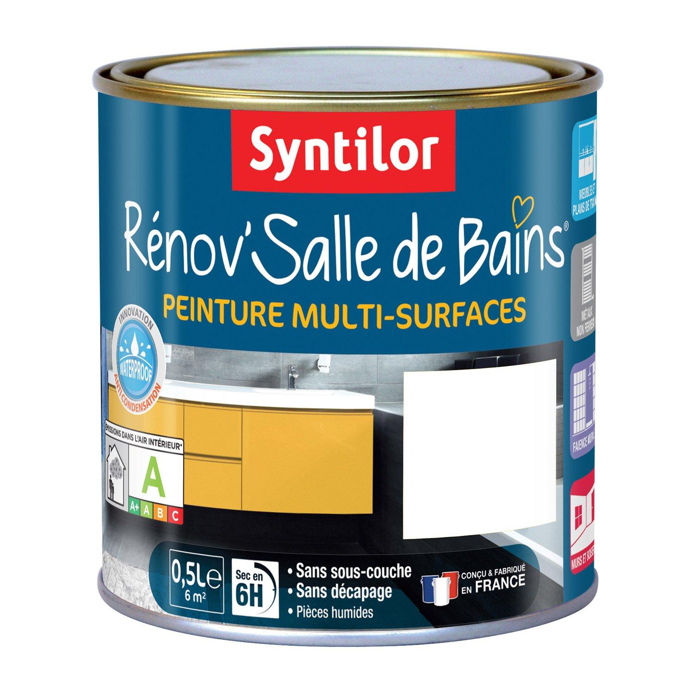 Peinture R Nov Salle De Bains Syntilor Blanc 0 5 L Leroy Merlin
