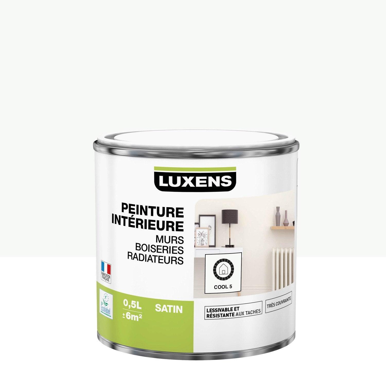 Peinture mur, boiserie, radiateur toutes pièces Multisupports LUXENS, cool 5, sa
