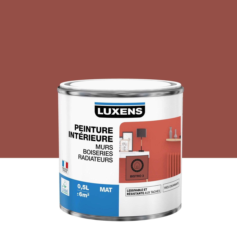Peinture mur, boiserie, radiateur toutes pièces Multisupports LUXENS, bistrot 3,
