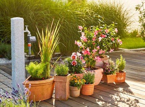 Comment choisir ses pots de fleurs et jardinières ?   Leroy Merlin