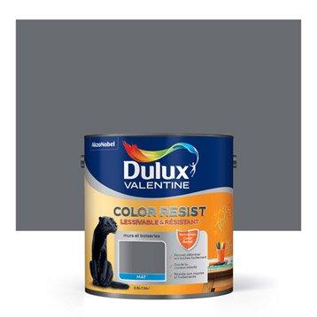 Peinture gris charbon DULUX VALENTINE Color resist 2.5 l