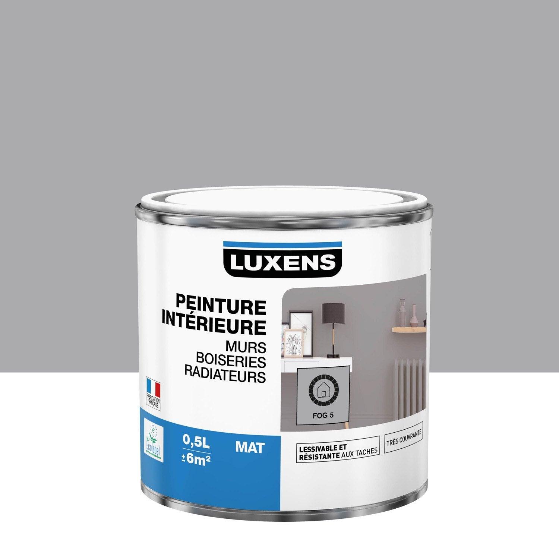 Peinture Multisupports fog 5 mat LUXENS 0.5 l