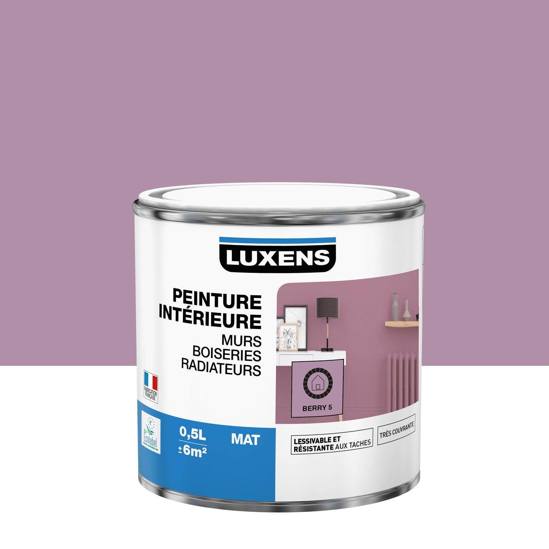 Peinture mur, boiserie, radiateur toutes pièces Multisupports LUXENS, berry 5, m