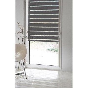 Store enrouleur jour / nuit INSPIRE, gris galet n°1, 62/66 x 160 cm