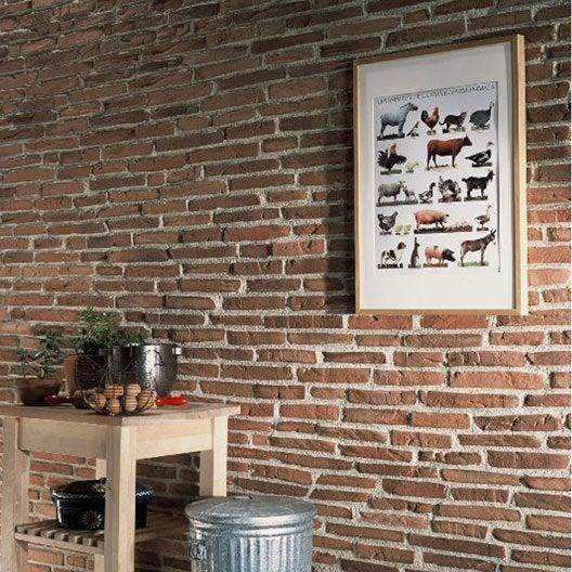 s1.lmcdn.fr/multimedia/4d1400983025/16ea454d8d66f/produits/plaquette-de-parement-toscane-en-beton-rouge.jpg