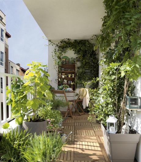 Un balcon végétal pour en profiter en toute tranquillité