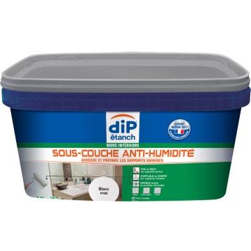 Peinture et traitement d 39 tanch it etanch it des murs et des sols au meilleur prix leroy - Sous couche anti moisissure ...