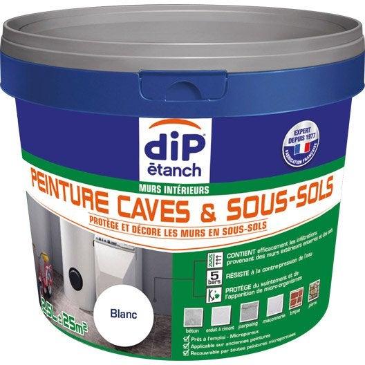 Peinture cave et sol peinture cave sous sol dip blanc 2 for Etancheite mur sous sol interieur