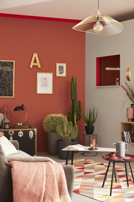 Un Mur Terracotta Pour Le Salon Leroy Merlin