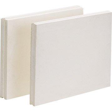 Carreau de plâtre plein L.50 x l.66 x Ep.5 cm