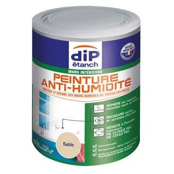 Peinture antihumidité, DIP sable 0.75 l