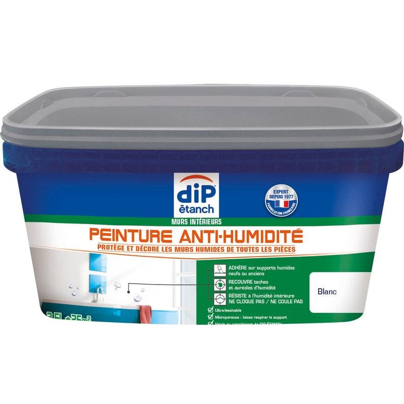Peinture Antihumidité Dip Blanc 2 5 L