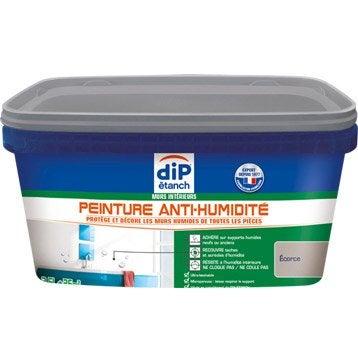 Peinture et traitement d 39 tanch it etanch it des murs et des sols au meilleur prix leroy - Peinture anti condensation ...