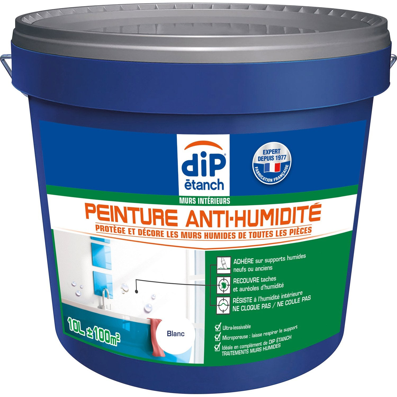 Peinture Antihumidité, DIP Blanc 10 L