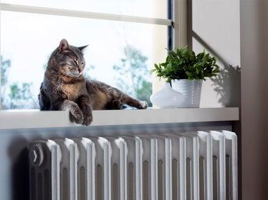 9 conseils d entretien pour un hiver tranquille leroy merlin. Black Bedroom Furniture Sets. Home Design Ideas