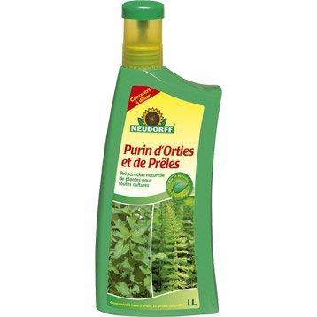 Traitement contre les insectes et les maladies traitement - Utilisation du purin d ortie ...