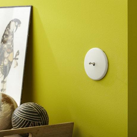 Un interrupteur rétro sur un mur vart anis