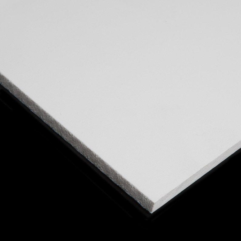 Plaque Pvc Blanc Laiteux Lisse L100 X L60 Cm Ep3 Mm