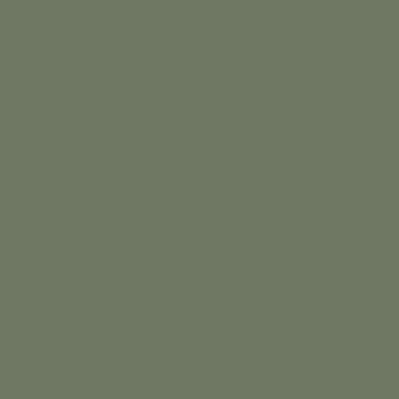 Peinture Aérosol Effet Poudré Mat Rustoleum Vert Kaki 0 4 L