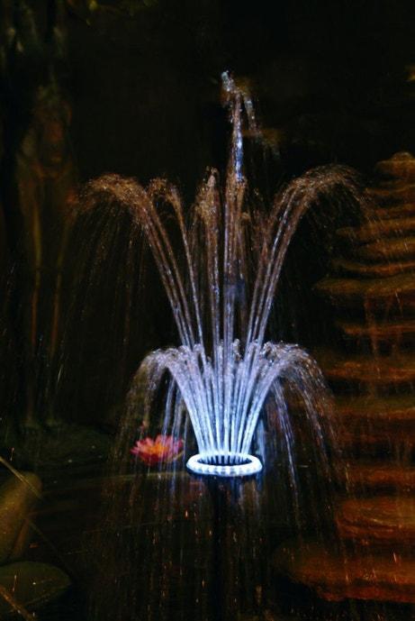 Un bassin pour le jardin