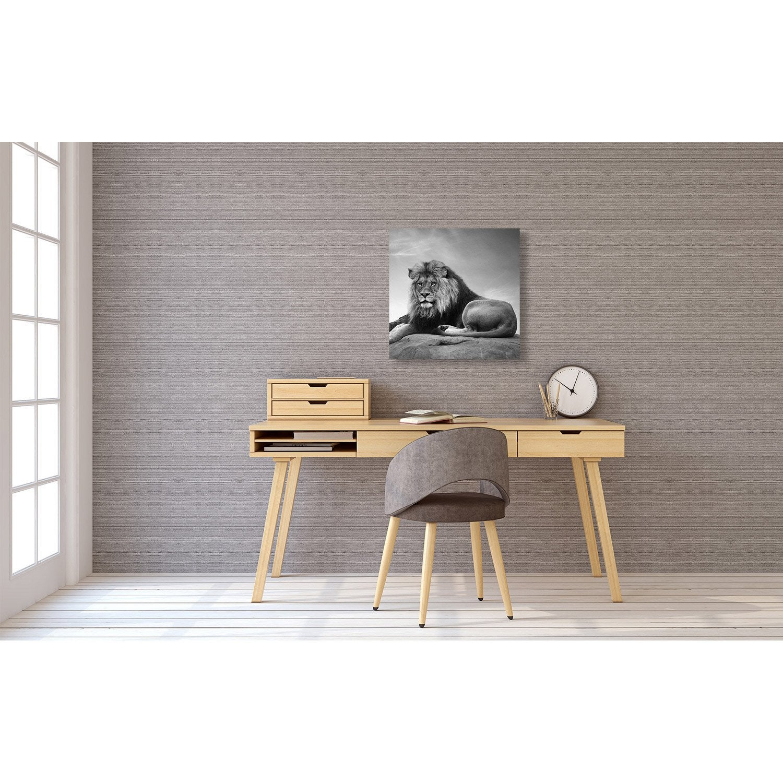 toile imprimée lion allongé l.40 x h.40 cm | leroy merlin