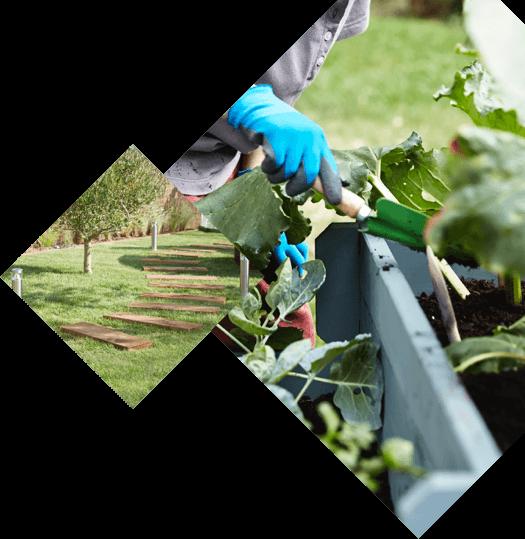 Les produits les conseils et les id es pour le bricolage for Les meilleurs sites de jardinage