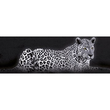 Panoramique animaux deco glass 33x98 cm for Miroir 90x30