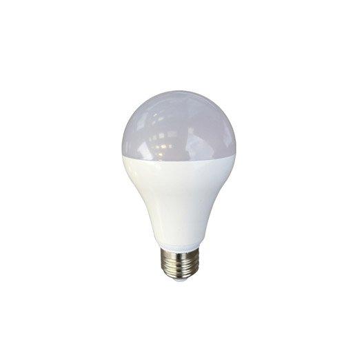 Ampoule standard led 15w 1521lm quiv 100w e27 4000k - Ampoule led 100w ...