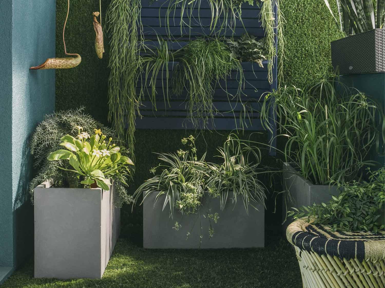 decorer terrasse avec plantes la terrasse de la dcoratrice batrice loncle o le bois et le zinc. Black Bedroom Furniture Sets. Home Design Ideas