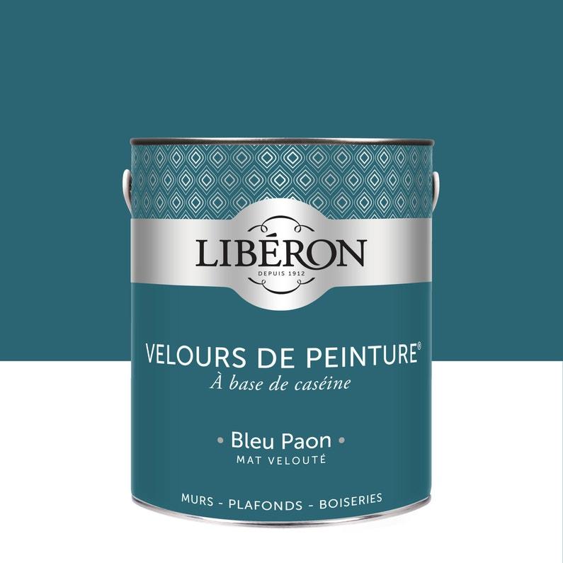 Couleur Bleu Canard Leroy Merlin - Almanusa