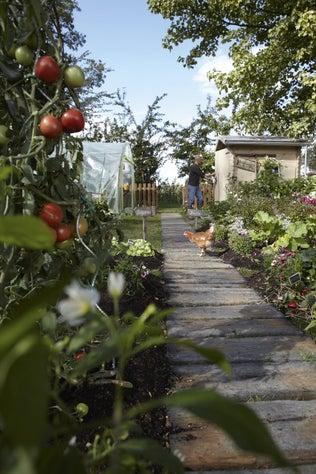 Jardiner en potager